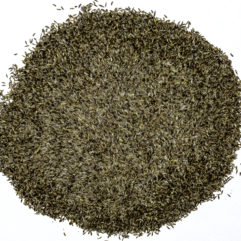 A top down view of a small pile of Artemisia vulgaris (Mugwort) seeds.
