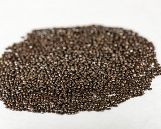 A front angle view of a pile of Coleus blumei (Plectranthus scutellarioides / Solenostemon scutellarioides) seeds