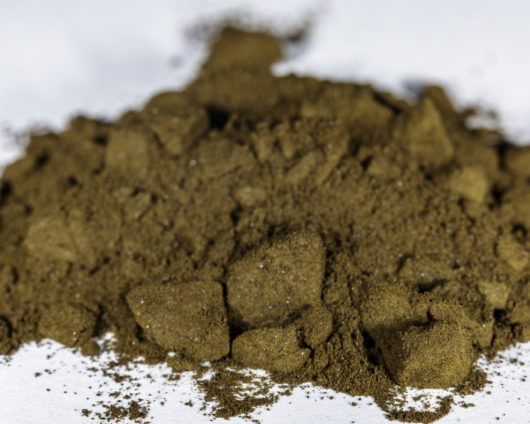 A front angle view of a small pile of Leonurus sibiricus (Siberian Motherwort) 20x powder extract.