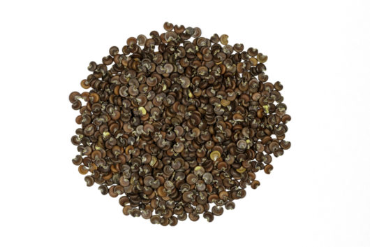 A top down photograph of a small pile of Althaea officinalis (Marshmallow) seeds.